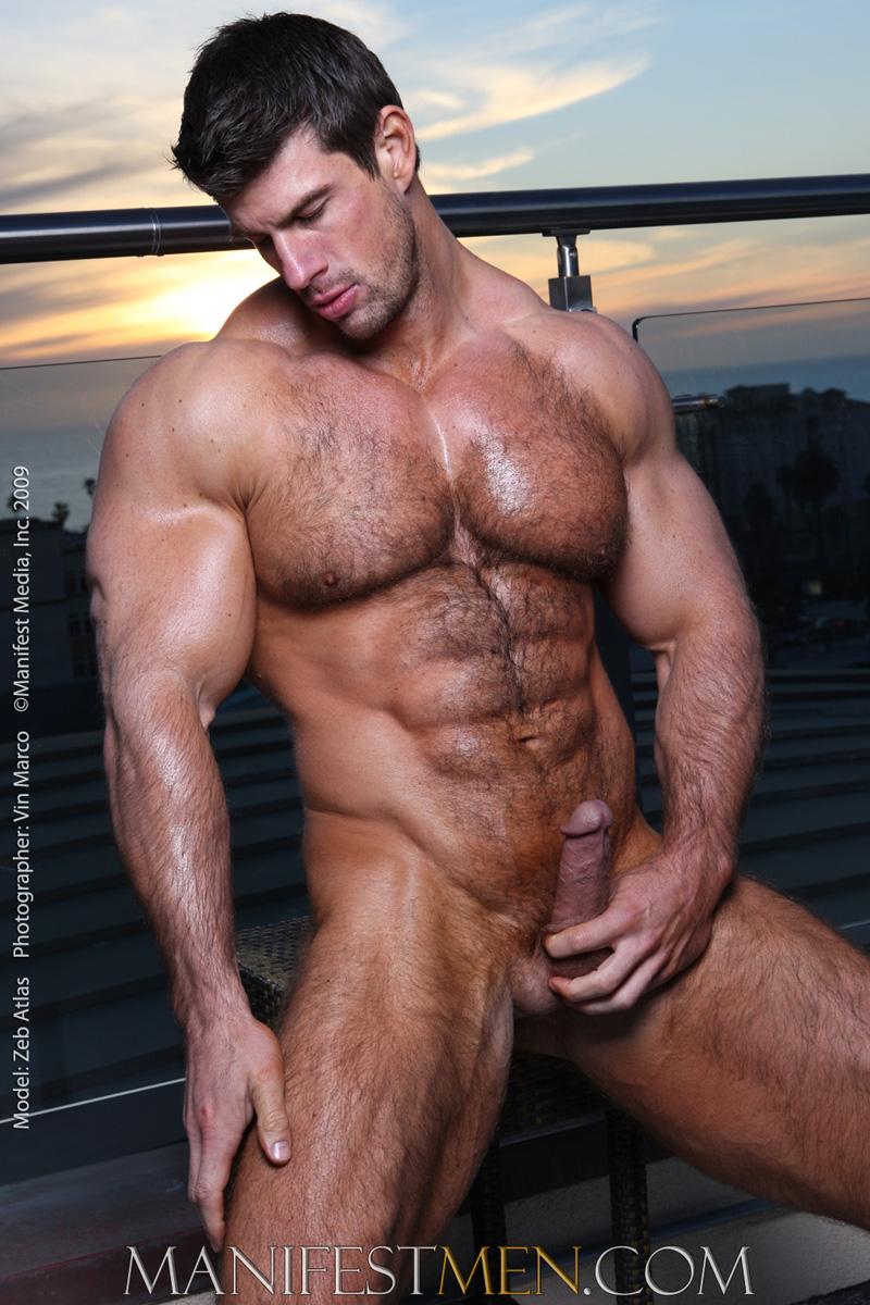 Muscle hairy atlas atlas zeb