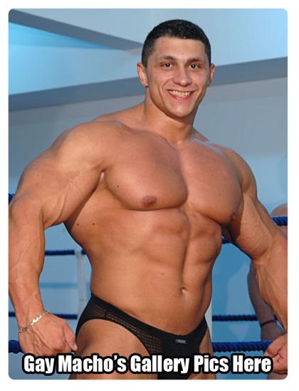Big Muscle Gay Macho