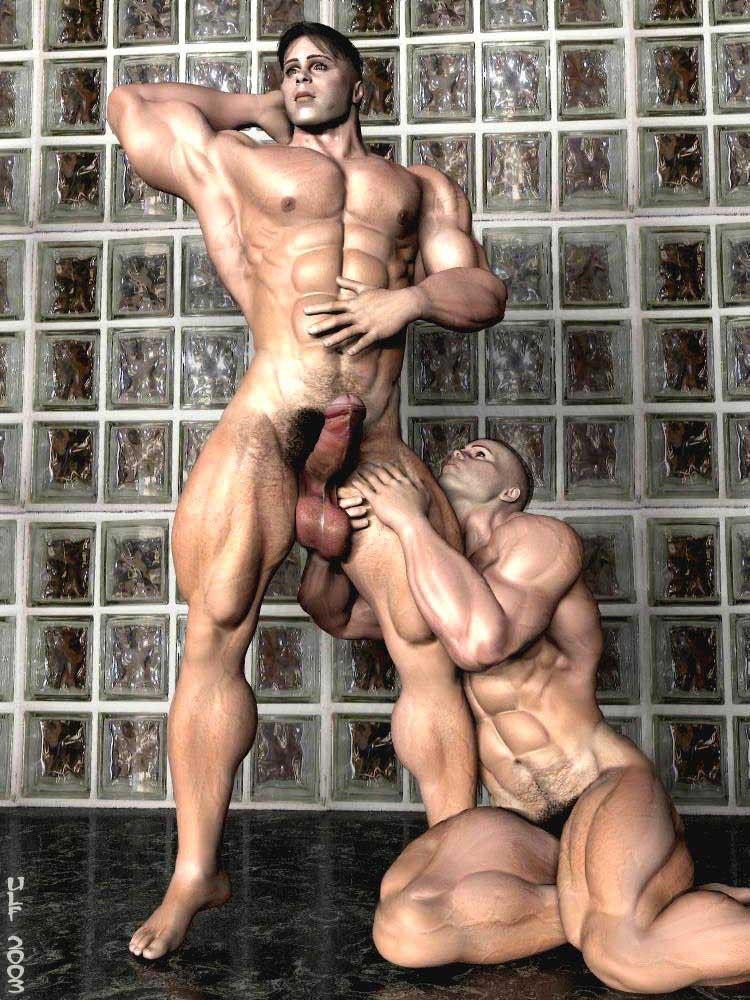 Gay male muscle photo stallion